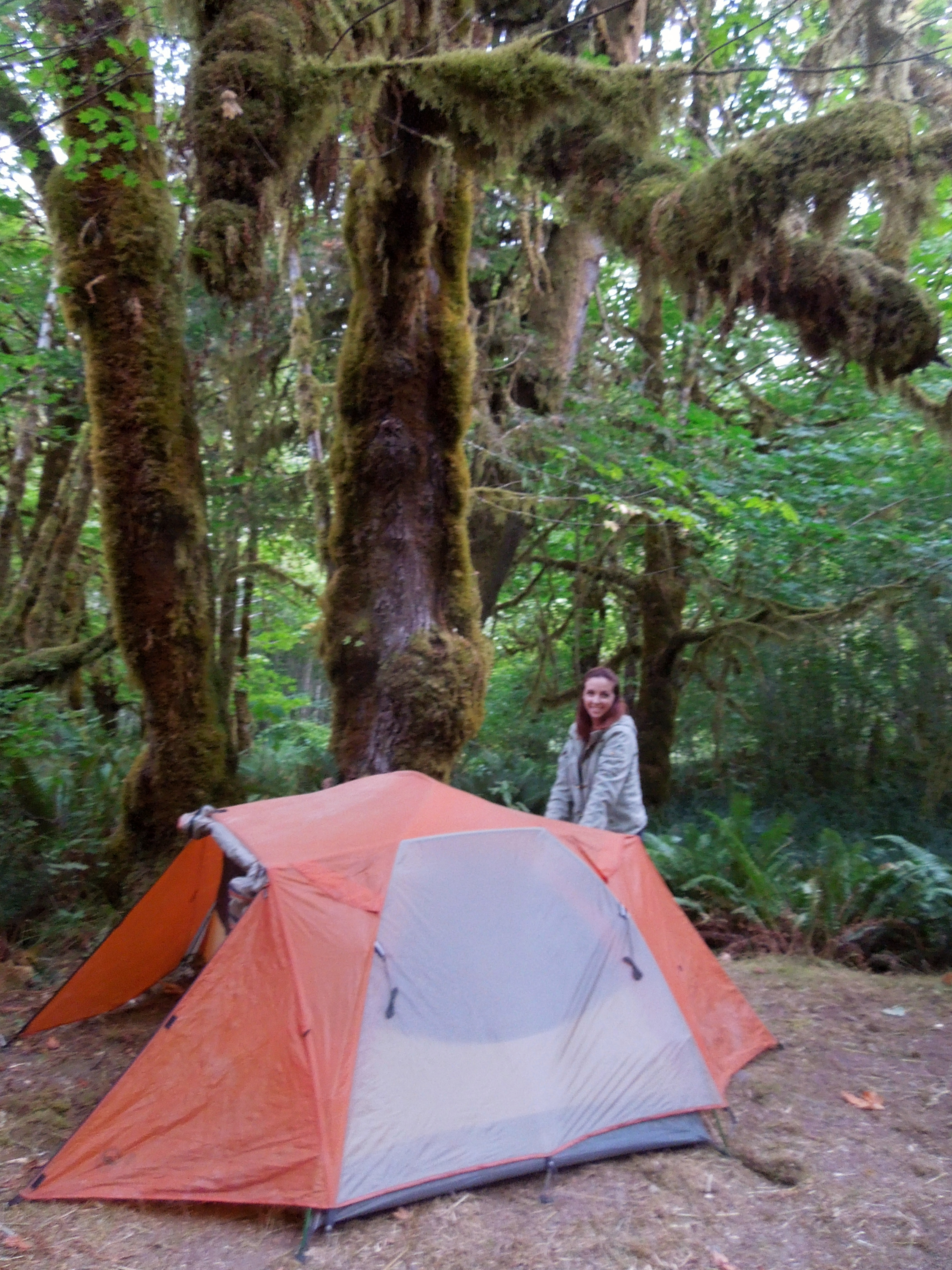 Camping In Redwood National Park The Whiskey Wanderer