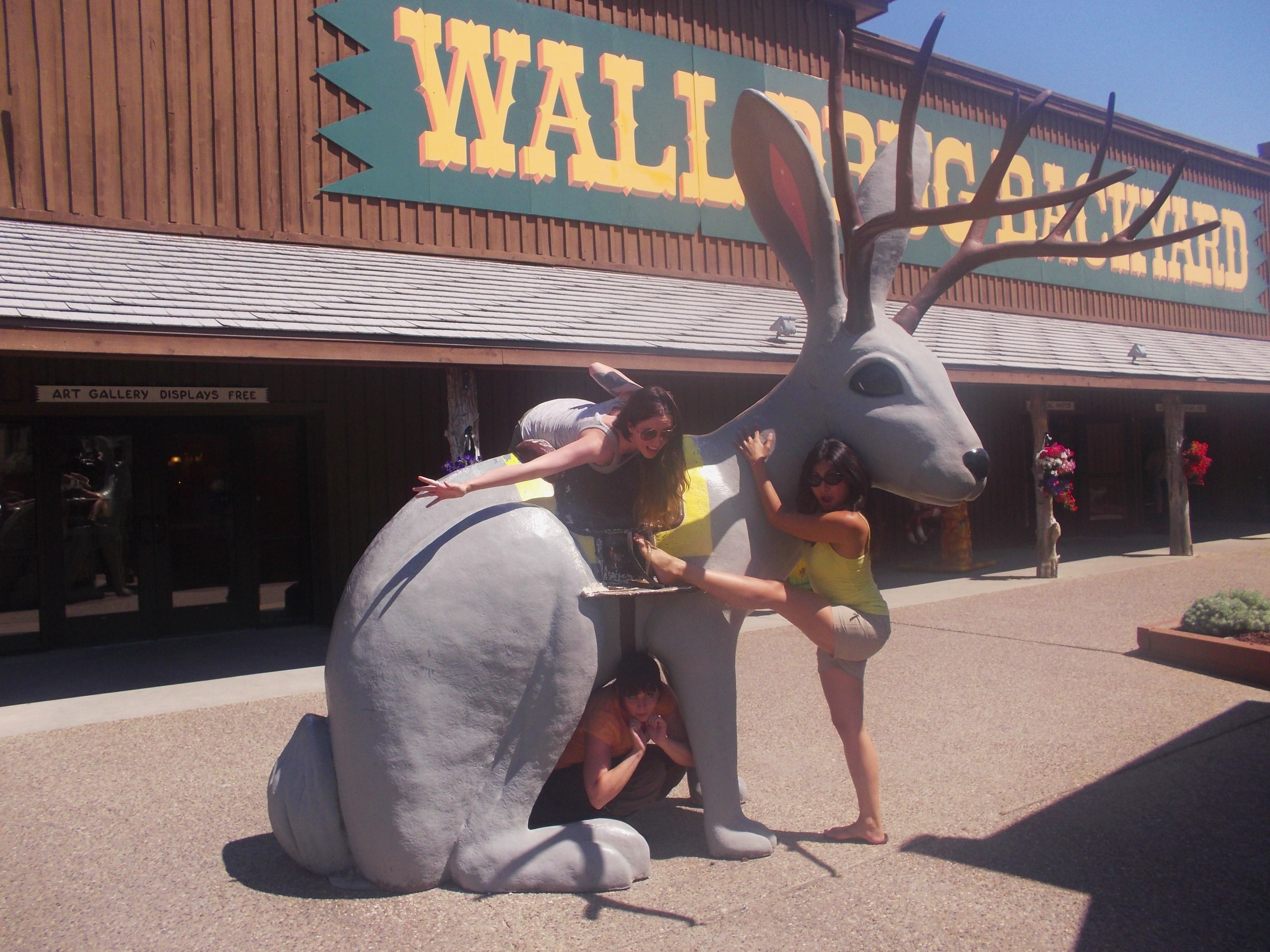 Wall Drug, Wall, South Dakota, Things To Do In South Dakota, South Part 79